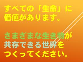 5【令和2年度0615  小さな仲間達】.png
