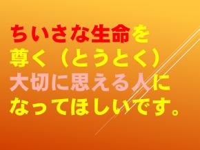 4【令和2年度0615  小さな仲間達】.png